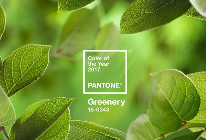2 -Greenery-15-0343-700x900
