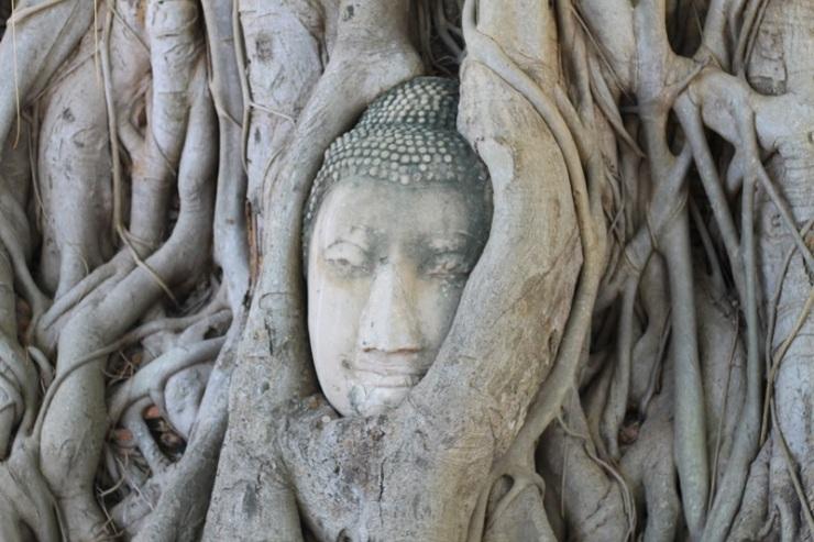 buddha-thai